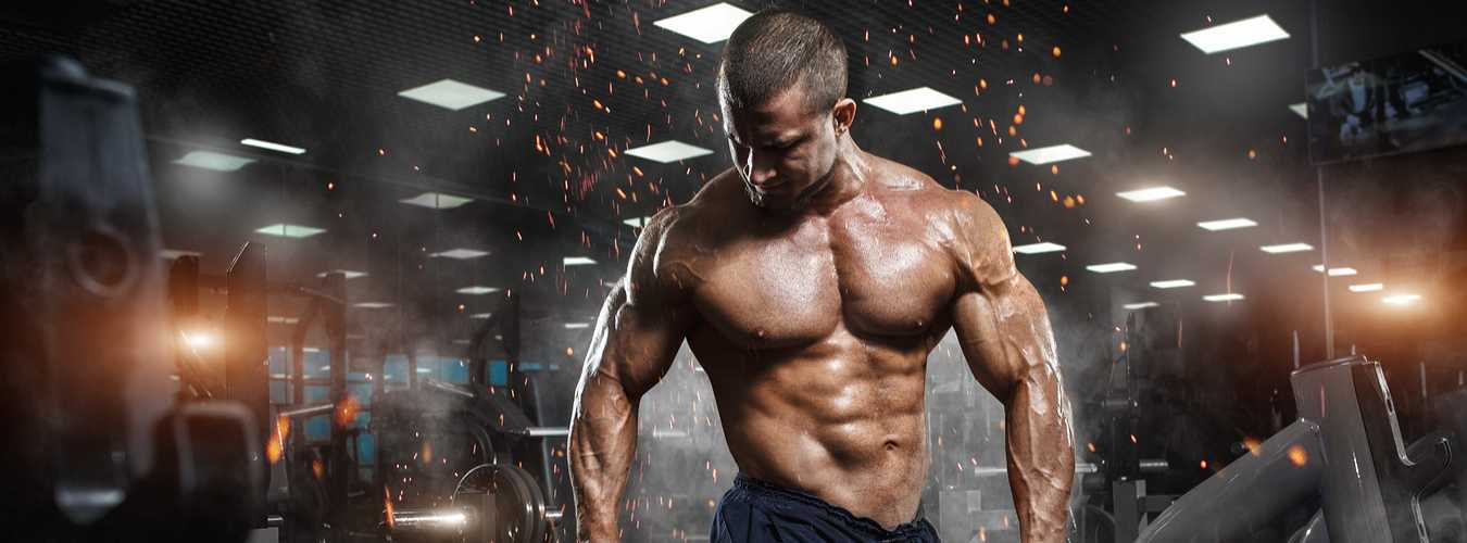Tips to Use Your Mass Gainer